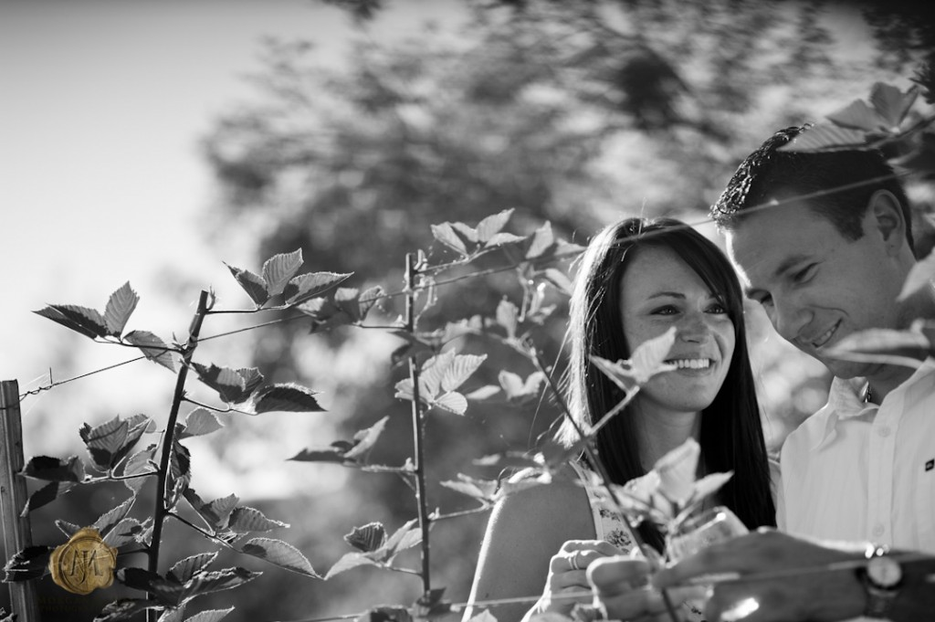 at 22 1024x681 Ashley & Trevor | Engaged