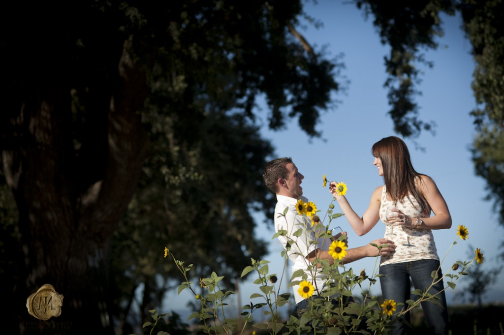 at 23 1024x681 Ashley & Trevor | Engaged