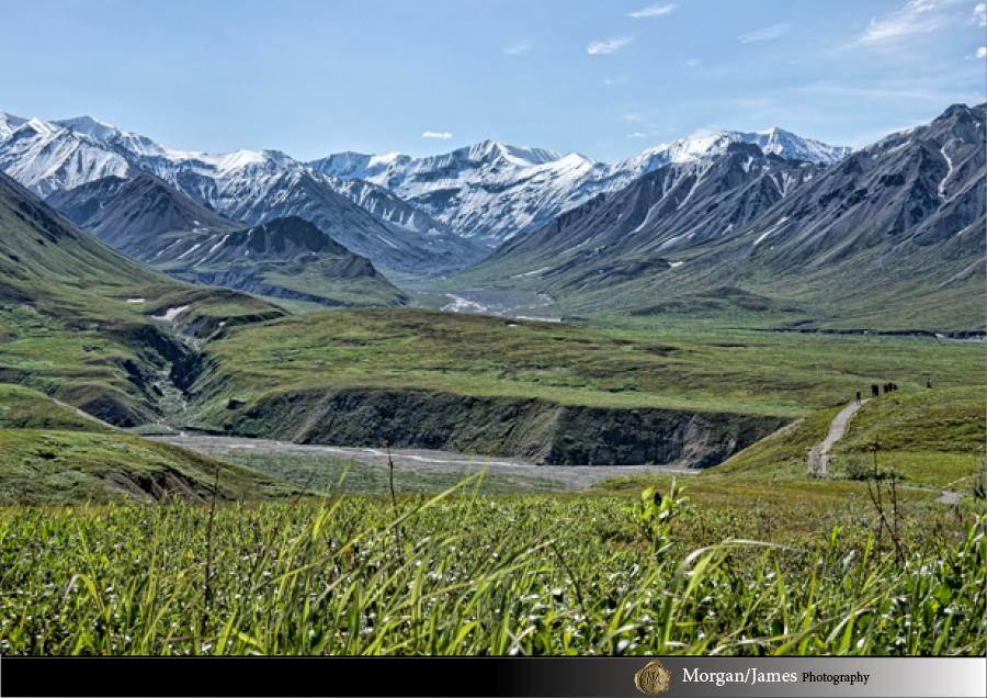 Alaska 16 Alaska