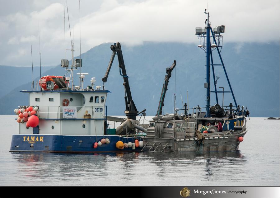 Alaska 19 Alaska