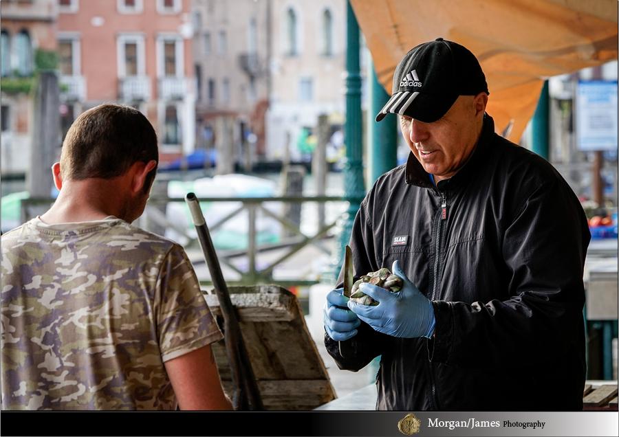 Venice 41 Venice
