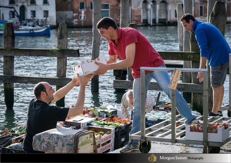 Venice 43 Venice