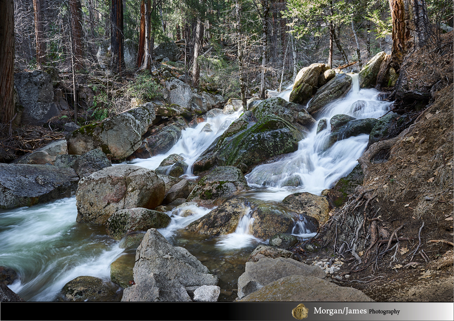 Yosemite 30 14 Yosemite Landscapes