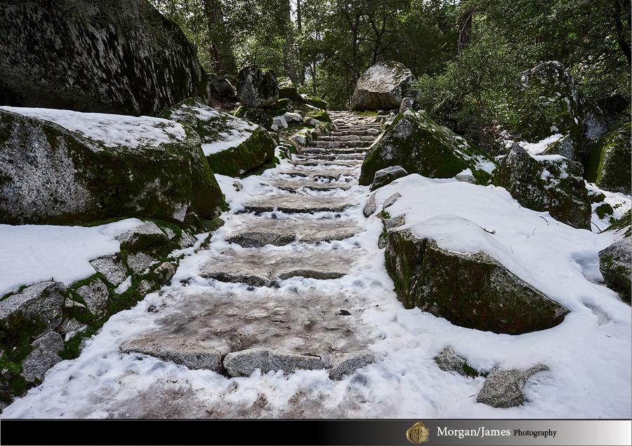 Yosemite 30 5 Yosemite Landscapes